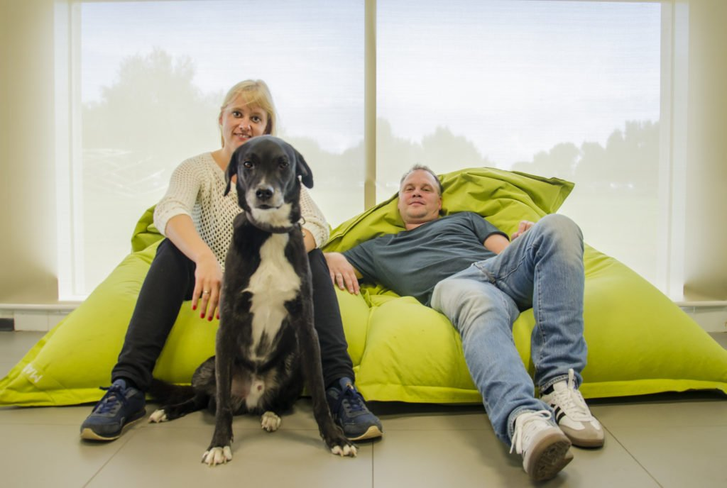 #DigitalNomads: Anni, Willem and Phoenix (the Dog)